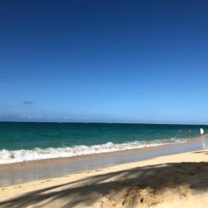 2019年ハワイ旅行②ラニカイビーチとウアヒアイランドグリル