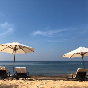 2020年ベトナム旅行記④ザ シェルズ リゾート&スパ~ビーチとプール~