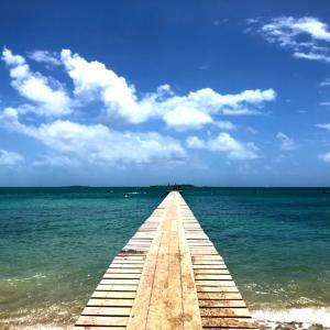 2018年ニューカレドニア旅行⑰旅のまとめ