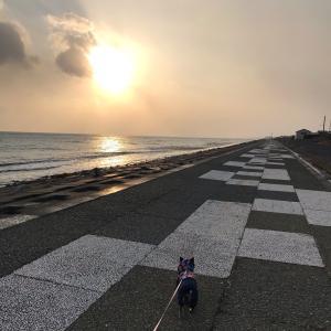 2021/1/14 久しぶりの海散歩
