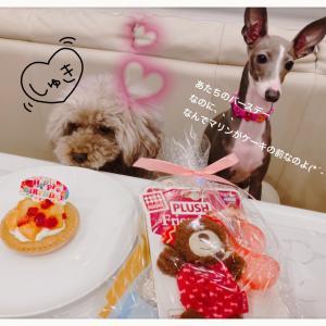 LaLa Birthday ˚✧₊⁎❝᷀ົཽ≀ˍ̮❝᷀ົཽ⁎⁺˳✧༚