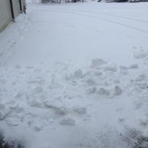 雪が 〜〜〜 来たー ^_^