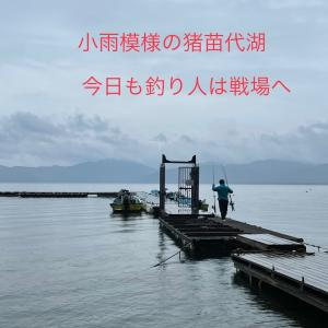 雨降りは 釣り日和