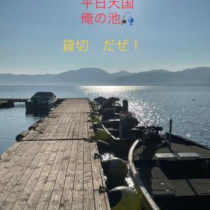 平日天国 僕の池 (^ ^)