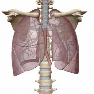 肺で筋反射テストができるようになりたい人いますか?
