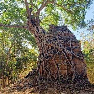カンボジアの世界遺産、サンボープレイクック