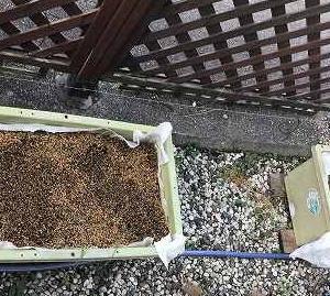新構想の底面灌水式栽培装置を増設しました。