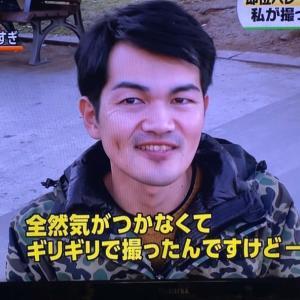 テレビ出演効果!!