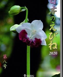日本のえびね8号(2020)発刊、ご入用の方は