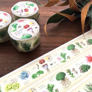 minneさんにて新商品「多肉植物図譜Ⅱマスキングテープ」販売スタート