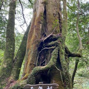 2021 屋久島の旅⑥透明度がヤバイ!!宮之浦川でカヌー