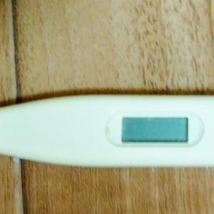 体温計を直してみました。