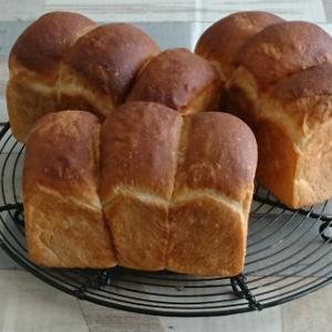 自家製ヨーグルトで焼いたミニ食パン