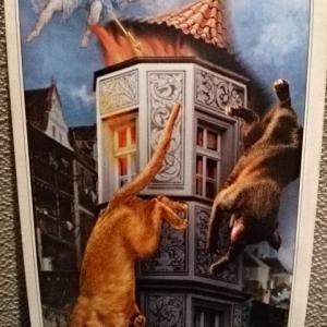 やっぱり猫が好き♪今日の猫様のお言葉「タワー」:2021/5/9