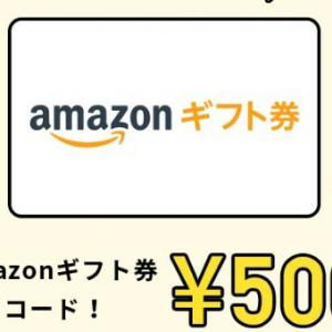 ふるさと納税でもれなくAmazonギフト券500円貰えます♡