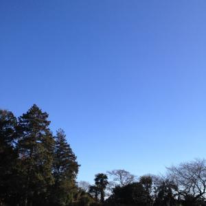 【開催しました】1/19(日) 青空スラックライン体験会@横浜市青葉区