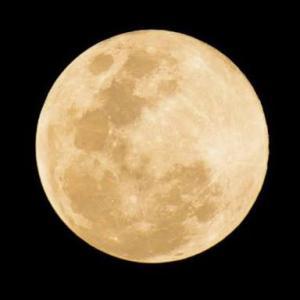 満月に月のような人に会った