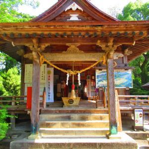 九州旅行 紫尾温泉と蛍船