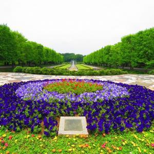 梅雨の時期の昭和記念公園