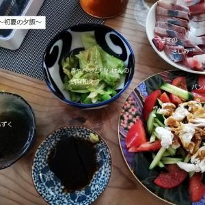 初夏の夕飯~旬の素材を使って安上がりでも味は最高でした♪