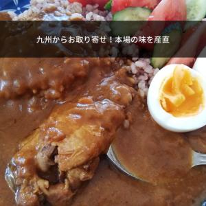 【九州お取り寄せ本舗】こだわりカレーを食べたらお肉ゴロゴロで美味しかった♪