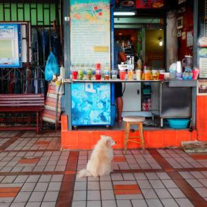 東南アジア旅のバンコクの思い出と別の意味のカンボジア