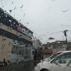 雨だぁー(;´Д`)