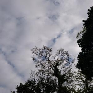 微妙な空模様微妙な釣果