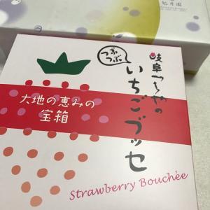 岐阜のお土産♡「つちや」「兎月園」