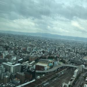 東京の感染者数、全員調べたら