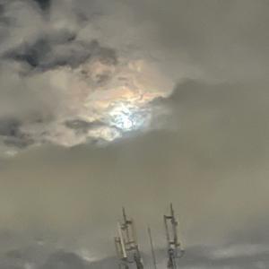 中秋の名月【モモヤの和菓子】