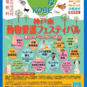 神戸市動物愛護フェスティバル!!