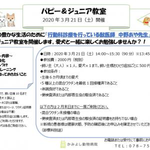 3月21日、パピー&ジュニア教室開催します☆