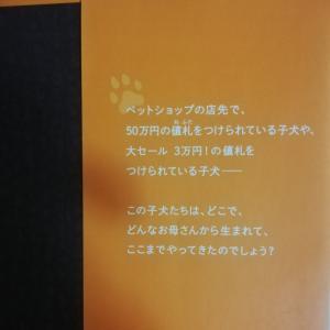 『子犬工場』『いまのわたしにできること』他:動物福祉とペットの流通について考える(3)