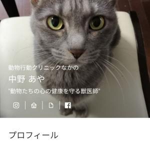 5月のオンライントークのお知らせ:猫14日(金)夜、犬21日(金)夜です☆