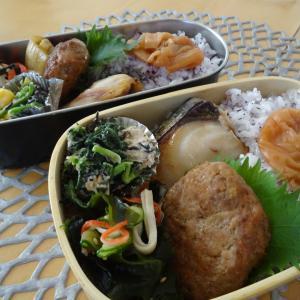 さわらの西京漬けのお弁当と常備菜