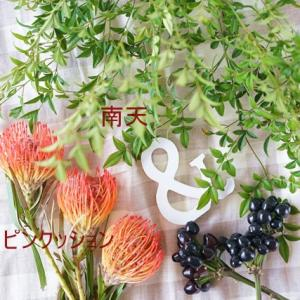 Flower of the week♪ 花材ver.