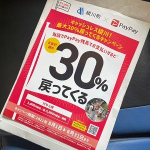 8月はPayPay30%還元キャンペーン