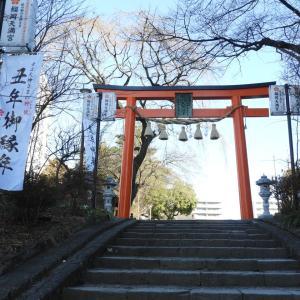 1月17日(日)の発電実績。自粛と三蜜避けて神社詣でに出かける