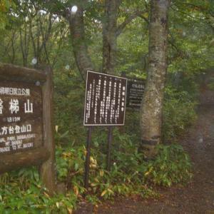 自然の息吹を味わいたくて会津磐梯山へ。