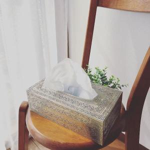 花粉の季節はおしゃれなティッシュケースで気分をアゲませんか?