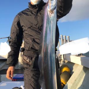 今日の太刀魚!
