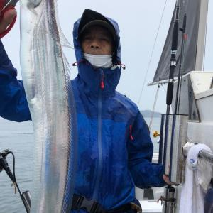14日太刀魚!