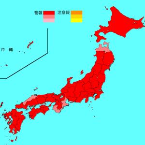 前略、インフルエンザ情報2018/2019【12】