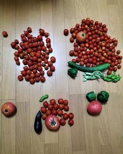 トマトトマトと、鳥の餌