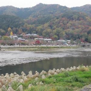 嵐山・嵯峨野散策(1)渡月橋~落柿舎