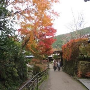 大原を訪ねて(1)呂川沿いを歩く