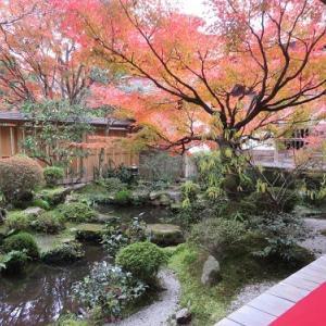大原を訪ねて(19) 宝泉院 鶴亀庭園