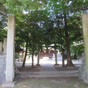 牛久保史跡巡り(9)熊野神社・牛久保のナギ