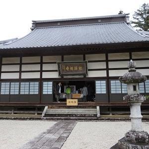 亀之丞(井伊直親)ゆかりの地と桜守の旅(2)松源寺の本堂
